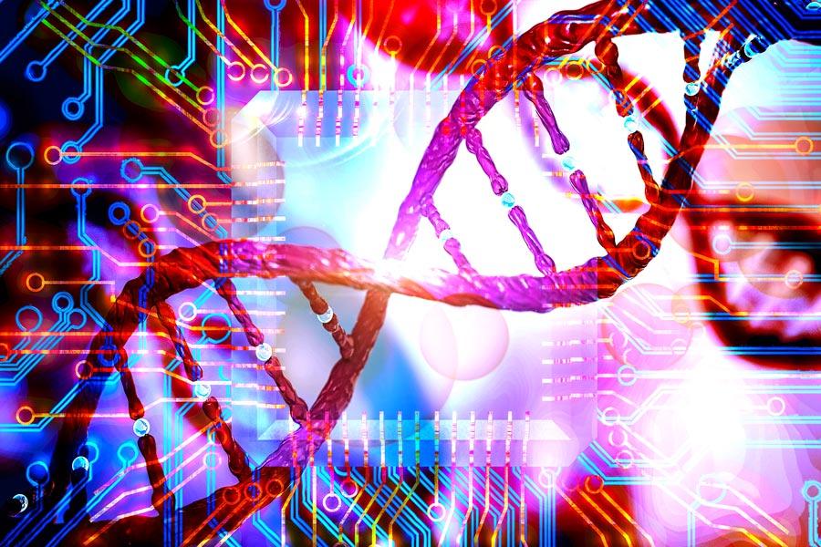 Bioinformatics_honors